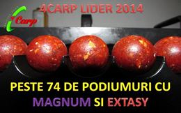 4CARP Lider in sistemul competitional 2014