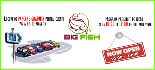 parcare gratuita bigfish