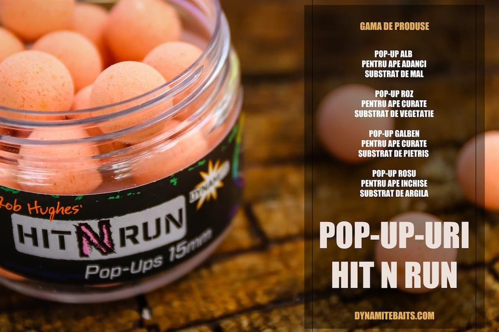 pop-up hit and run dynamite baits