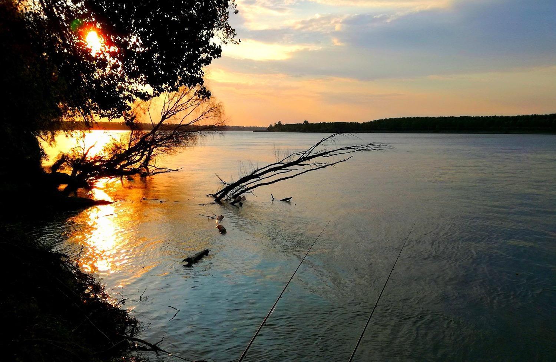 Localizarea crapului la Dunare